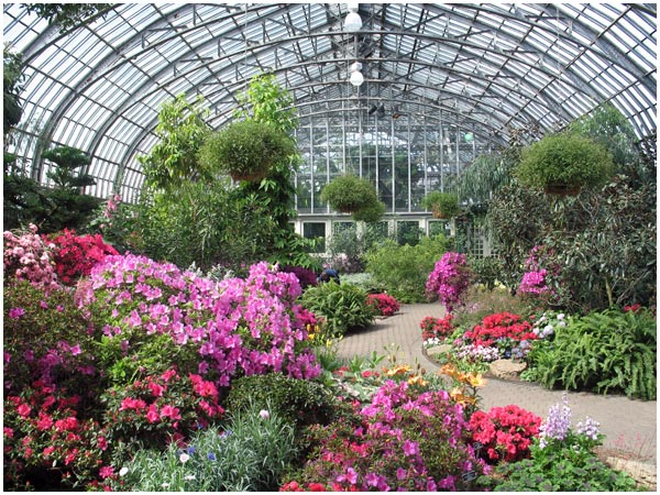 A Trip To The Garfield Park Conservatory Avoision Com